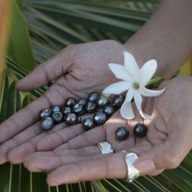 美しいタヒチ産黒真珠ジュエリーはNUIHERE(ヌイヘレ)